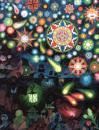 PETER PAN: An Illuminated Edition