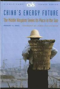China's Energy Future
