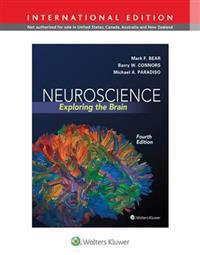 Neuroscience - exploring the brain