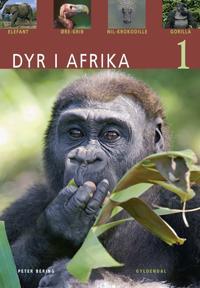 Dyr i Afrika-Elefant, øregrib, nilkrokodille, gorilla