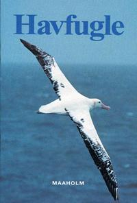 Havfugle