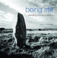 Being Still: Standing Stones in Wales