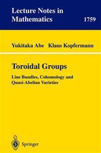 Toroidal Groups