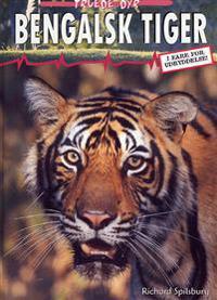 Bengalsk tiger