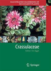 Illustrated Handbook of Succulent Plants