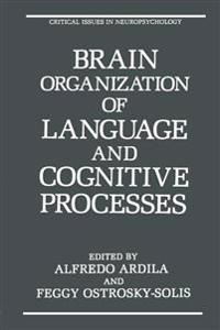 Brain Organization of Language and Cognitive Processes