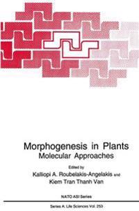 Morphogenesis in Plants