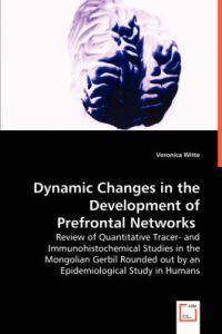 Dynamic Changes in the Development of Prefrontal Networks