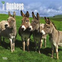 Donkeys 18-Month 2014 Calendar
