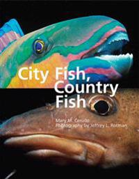 City Fish, Country Fish