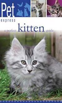A Perfect Kitten Guide