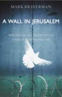 A Wall in Jerusalem: Hope, Healing, and the Struggle for Justice in Israel and Palestine