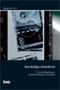 Storskaliga skattebrott. Brå rapport 2011:7 :  En kartläggning av skattebrottslingens kostnader