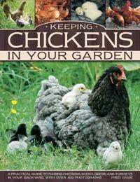 Keeping chickens in your garden - a practical guide to raising chickens, du