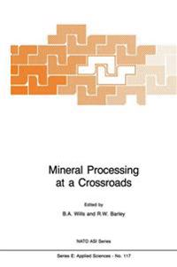 Mineral Processing at a Crossroads