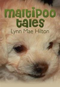 Maltipoo Tales