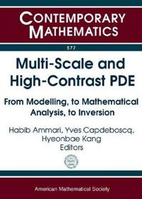 Multi-scale and High-contrast PDE