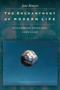 Enchantment of Modern Life