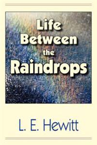 Life Between the Raindrops