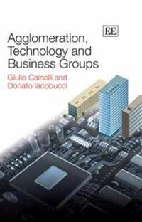 Agglomeration, Technology and Business Groups