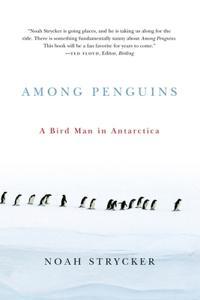 Among Penguins