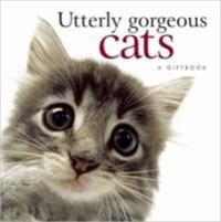 Uttlery Gorgeous Cats