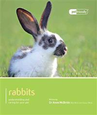 Rabbit - Pet Friendly