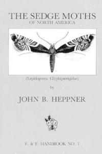 Sedge Moths of North America Lepidoptera  Glyphipterigidae