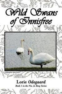 Wild Swans of Innisfree