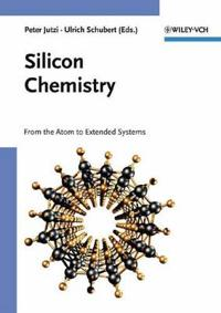Silicon Chemistry: From the Atom to Extended Systems