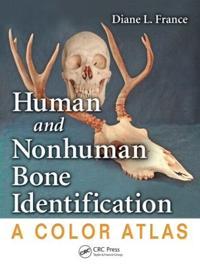 Human and Nonhuman Bone Identification