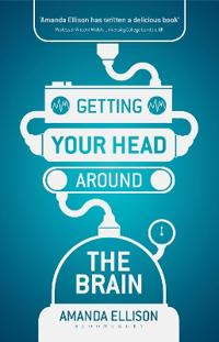 Getting Your Head Around the Brain