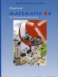 Anpassad matematik 6 B