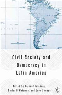 Civil Society And Democracy in Latin America