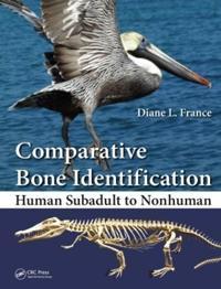 Comparative Bone Identification
