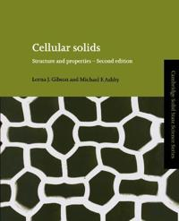 Cambridge Solid State Science Series