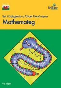 Sut i Ddisgleirio a Chael Hwyl mewn Mathemateg