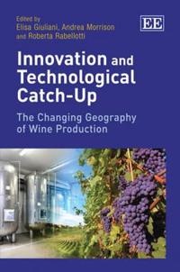 Innovation and Technological Catch Up