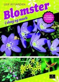 Blomster i skog og mark - Leif Ryvarden   Ridgeroadrun.org