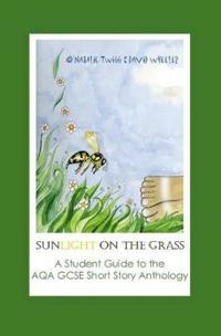 Sunlight on Grass: a Student Guide to the AQA GCSE Short Story Anthology