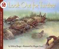Look Out for Turtles