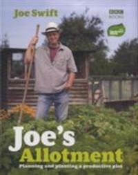 Joes allotment - planning and planting a productive plot