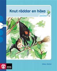 Läshoppet Nivå 3 - Knut, 4 titlar
