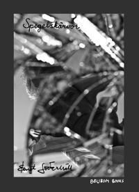 Spegelskärvor : poetiska återspeglingar i fem delar : saltando i C-dur