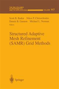 Structured Adaptive Mesh Refinement