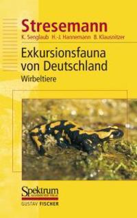 Stresemann - Exkursionsfauna Von Deutschland. Band 3: Wirbeltiere