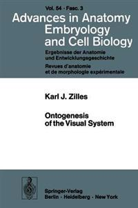 Ontogenesis of the Visual System