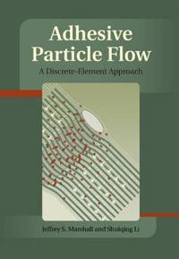 Adhesive Particle Flows