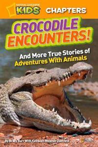 Crocodile Encounters!