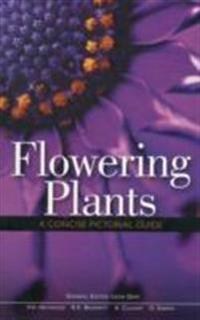 Flowering Plants A Concise Pictorial Guide